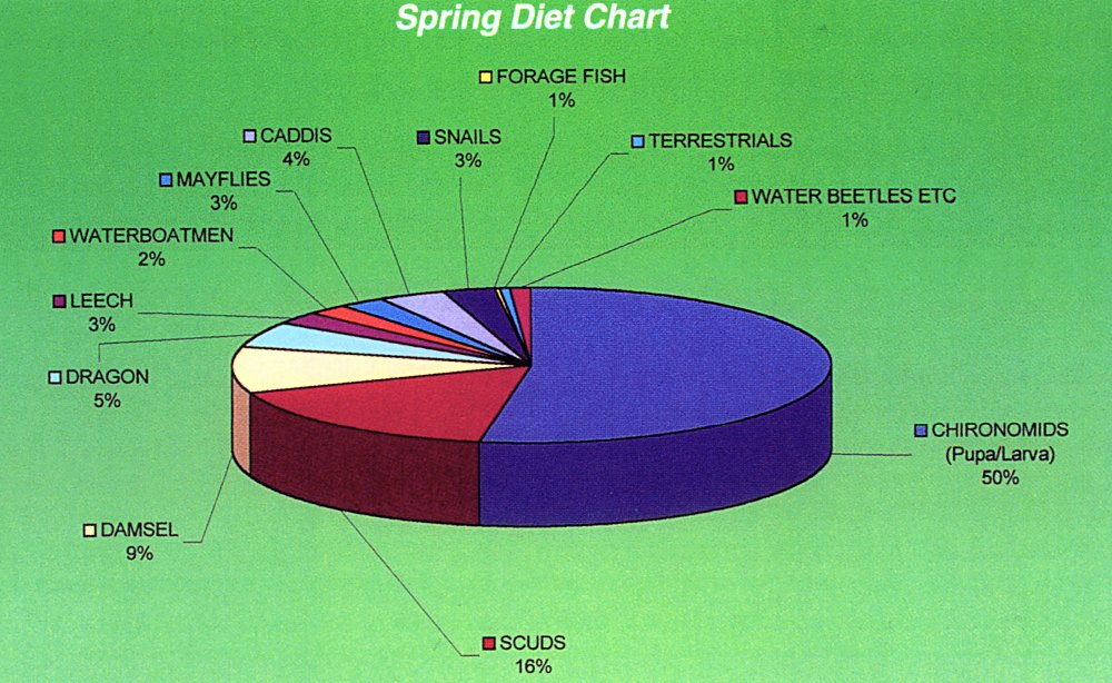 Seasonal Diet Charts For Fly Fishing Trout